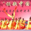 2014第六届金秋乐全省中老年舞蹈展演(二)