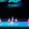 """2014四川省第八届""""星光灿烂""""展演(22日一)"""