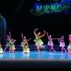 """2014四川省第八届""""星光灿烂""""展演(22日二)"""